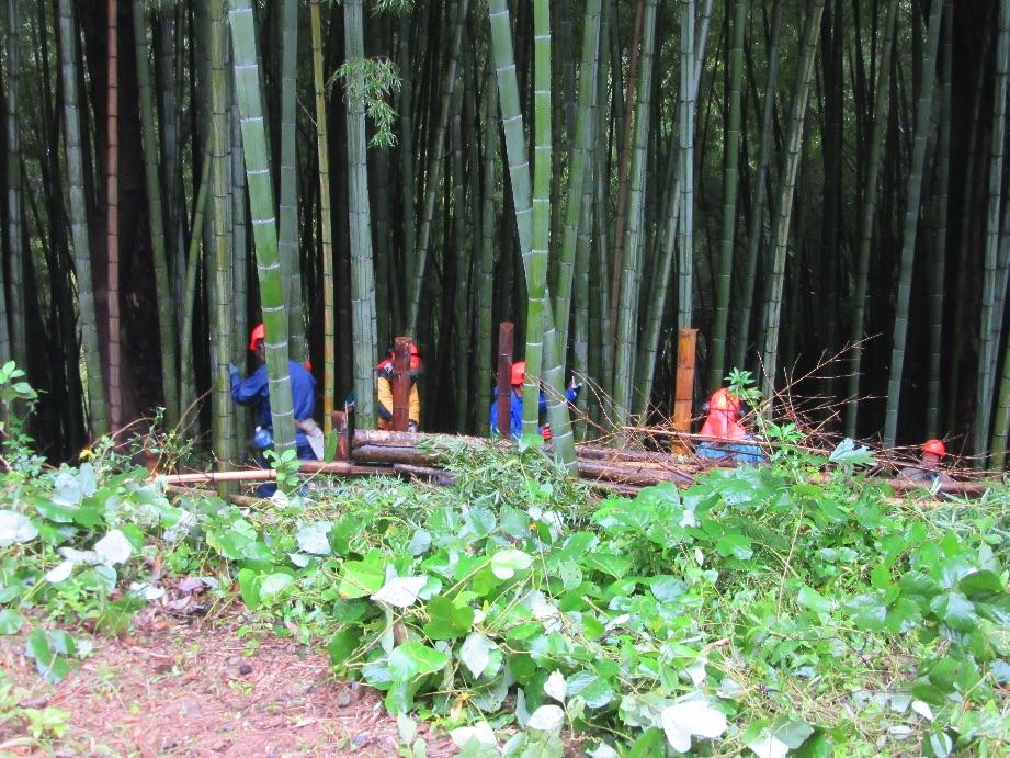 金沢市林業大学竹林整備研修授業1