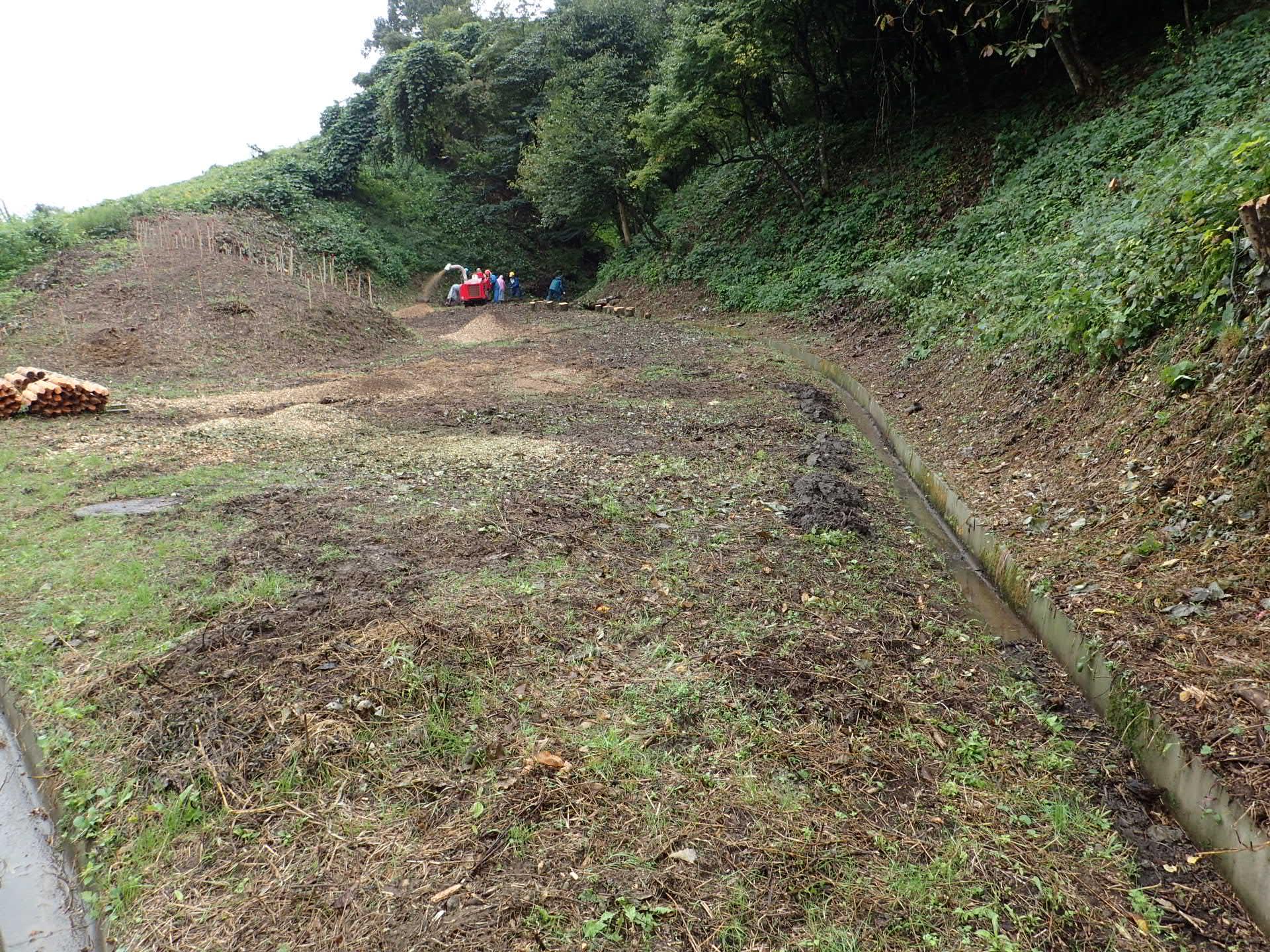 金沢大学角間の里 伐採木処理作業3